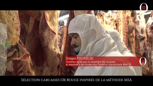 Sélection des carcasses Or Rouge inspirée de la méthode MSA
